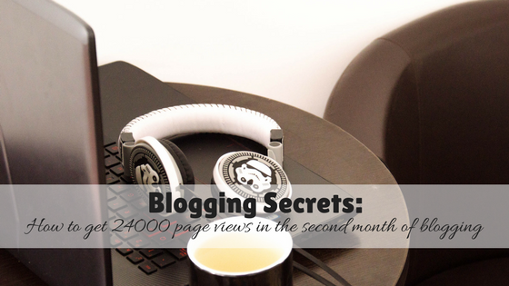 Blogging Secrets: How to get 24000 page views in the second month of blogging